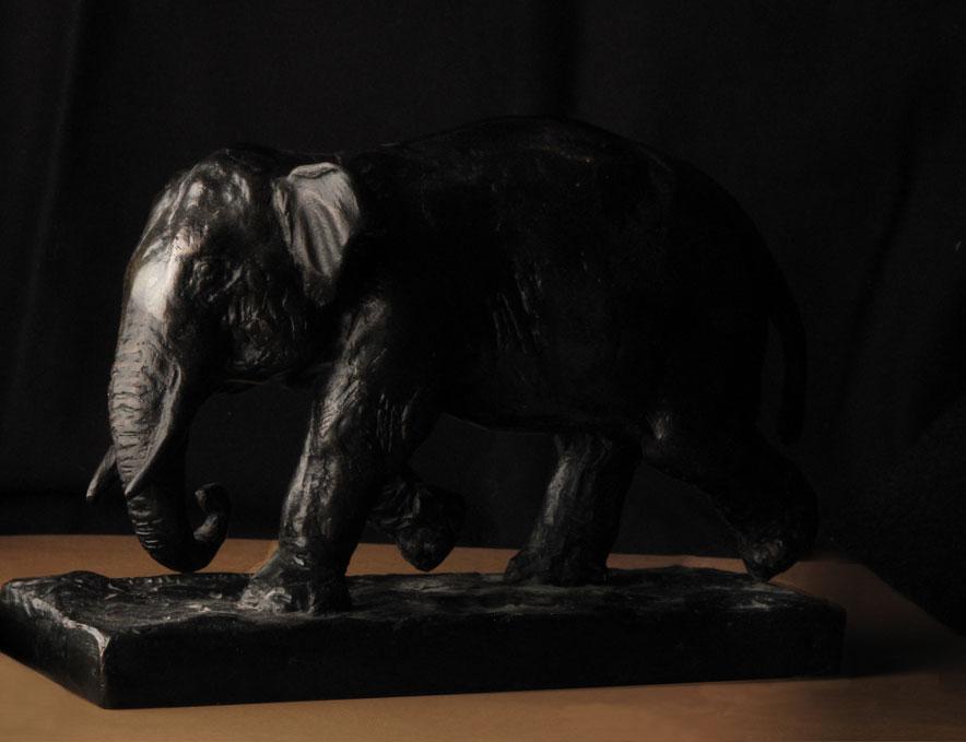 nature-morte_elephant